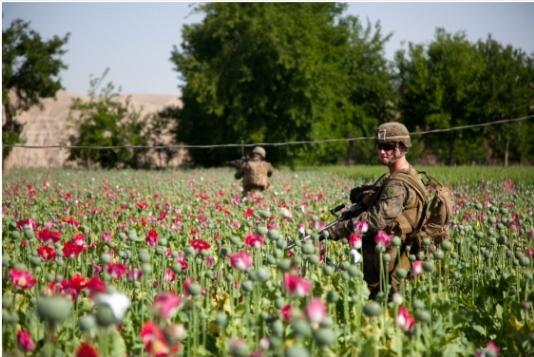 L'Afghanistan la CIA e la droga